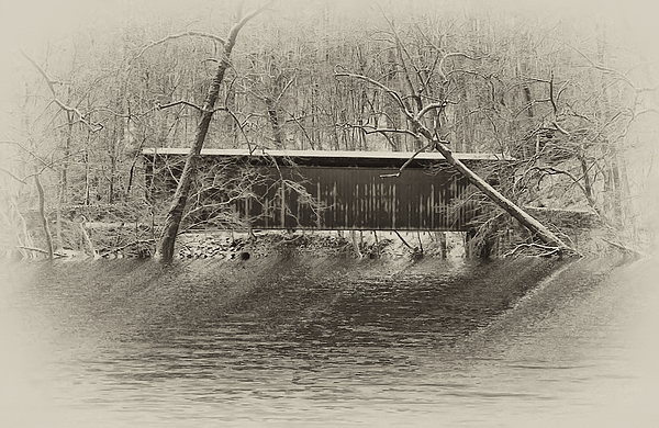 Covered Bridge In Black And White Photograph