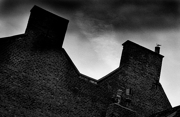 Photographer Photograph - Dark Day In The Fens by Jez C Self
