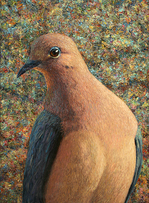 Dove Painting - Dove by James W Johnson