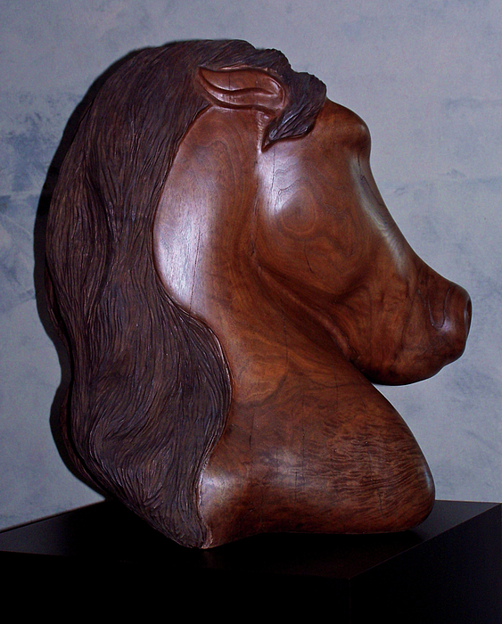 Sculpture Sculpture - Dual Equine by Lonnie Tapia