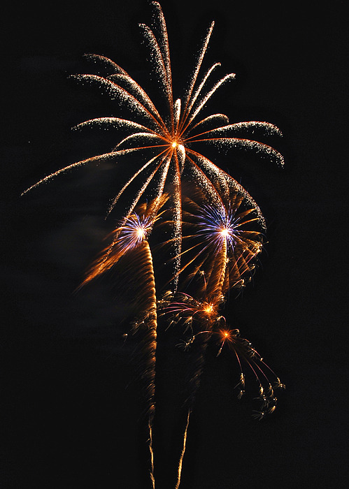 Fireworks Photograph - Fireworks 5 by Michael Peychich