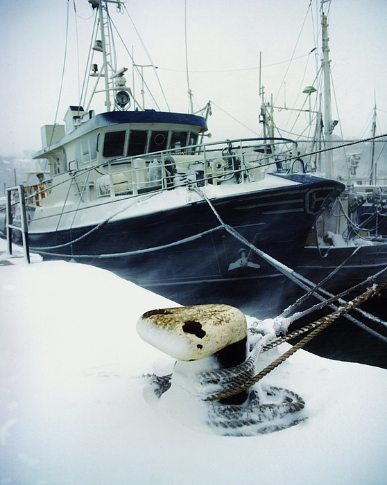 Fishing Trawler, Howth Harbour, Co Photograph