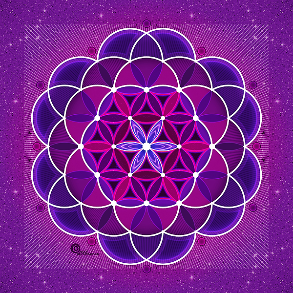 Flower Of Life Digital Art