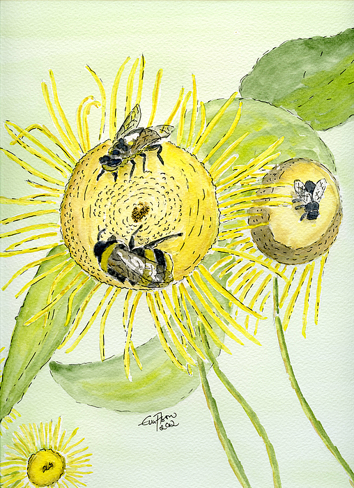 Flowers And Bees Painting