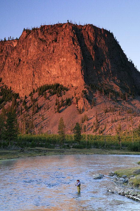 Fly fishing on the madison river photograph by drew rush for Fly fishing yellowstone river