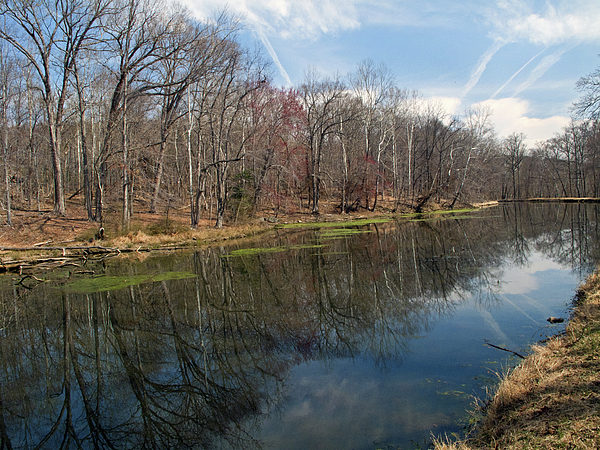 Great Falls Park Along The Towpath - Maryland - C And O Canal Photograph