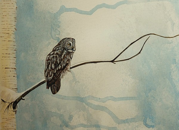 Great Gray Owl Painting