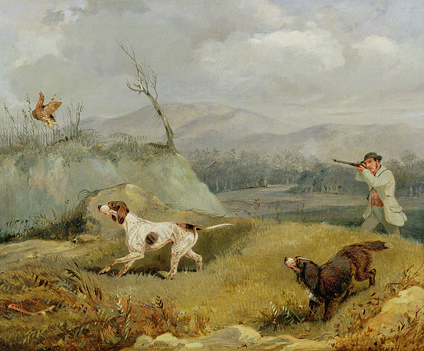 Grouse Painting - Grouse Shooting  by Henry Thomas Alken