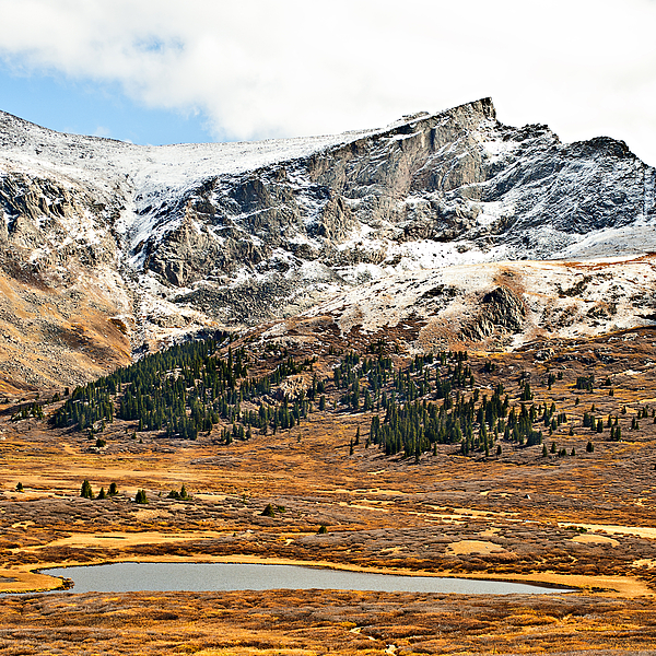 Mountains Photograph - Guanella Pass Colorado by Beth Riser