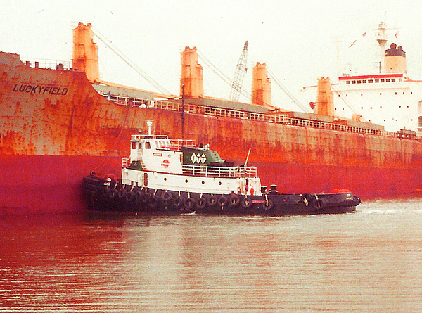 Tugboat Photograph - Harbor Tugboat by Fred Jinkins