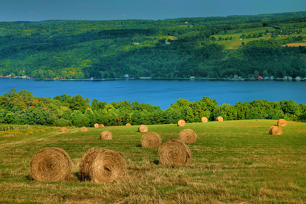 Hay Photograph - Hayfield And Lake Iv by Steven Ainsworth