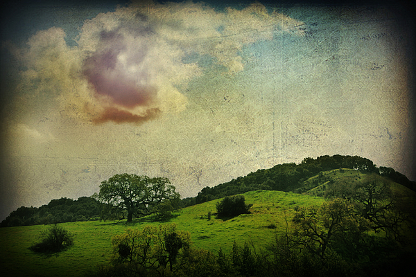 Landscape Photograph - Higher Love by Laurie Search