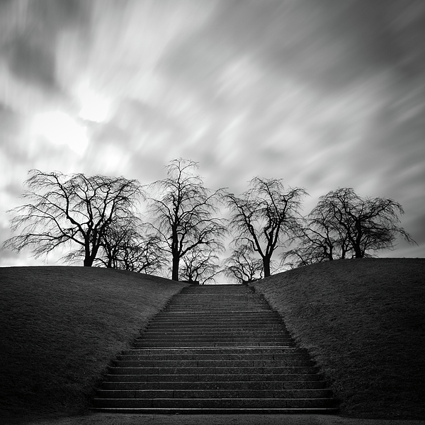 Hill, Stairs And Trees Print by Peter Levi