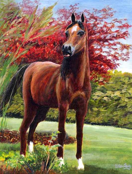 Horse Painting - Horse Portrait by Eileen  Fong