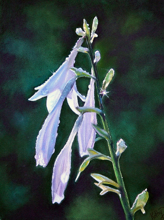 Floral Painting - Hosta Dew by Kathy Dolan