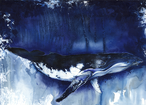Humpback Whale Mixed Media - Humpback Whale by Anthony Burks Sr