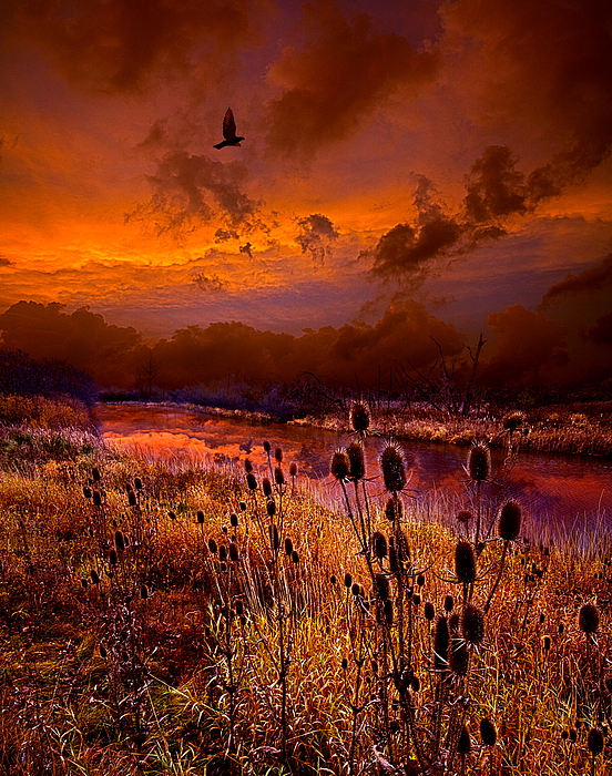 Horizons Photograph - Intuition by Phil Koch