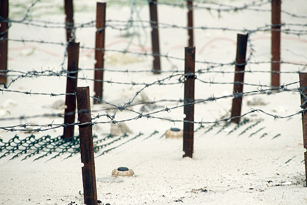 History Photograph - Iraqi Anti-personnel Mines And Barbed by Everett