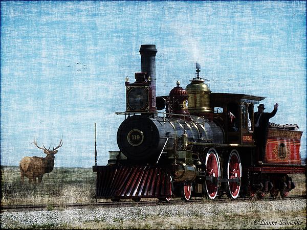 Railroad Photograph - Iron Horse Invades The Plains by Lianne Schneider