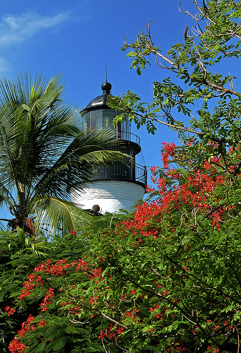 Tropical Photograph - Key West Lighthouse by Frank Mari