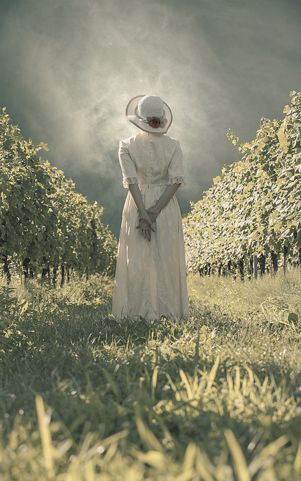 Lady In Vineyard Photograph