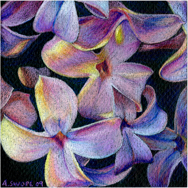 Floral Painting - Lilac 1 by Audi Swope