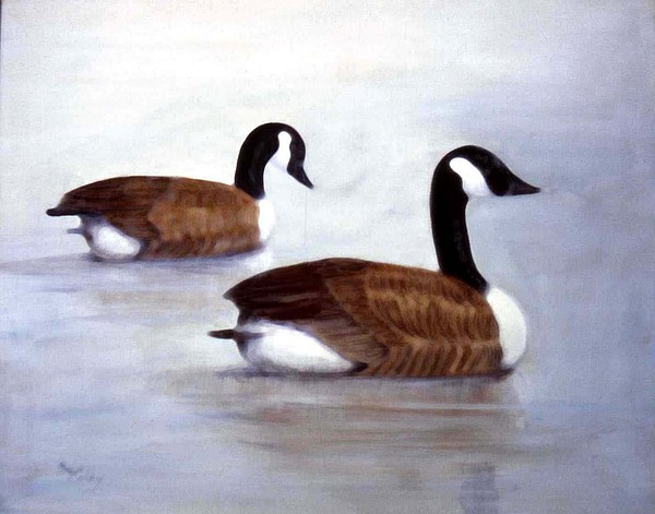 Geese Painting - Looking Out by Sue Coley