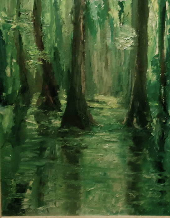 Bruce Ben Pope - Louisiana Swamp