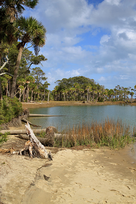 Lagoon Photograph - Lowcountry Lagoon by Louise Heusinkveld