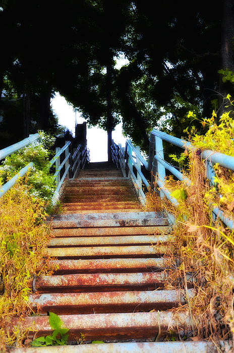 Manayunk Photograph - Manayunk Steps by Bill Cannon