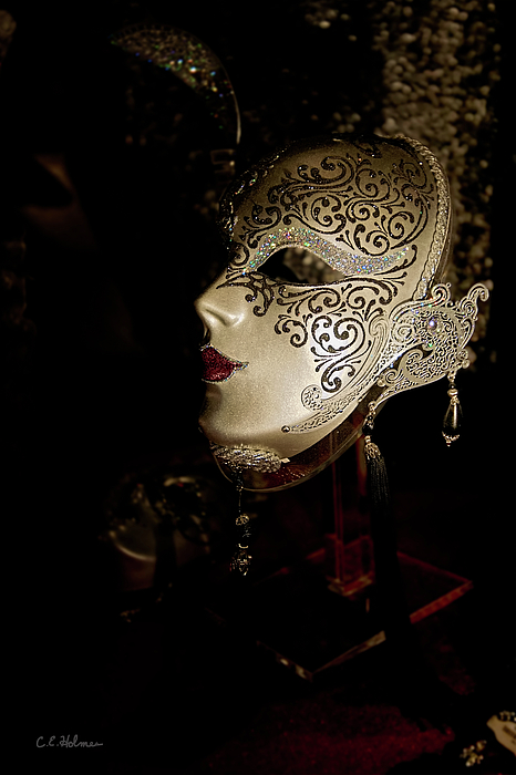 Mask Photograph - Mardi Gras Mask by Christopher Holmes