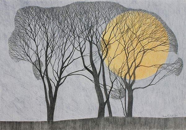 Landscape; Trees; Winter; Scenic; Moon; Full Moon; Twilight Drawing - Megamoon by Ann Brain
