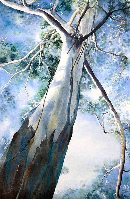 Gum Tree Painting - Mighty Gum by Carol McLagan