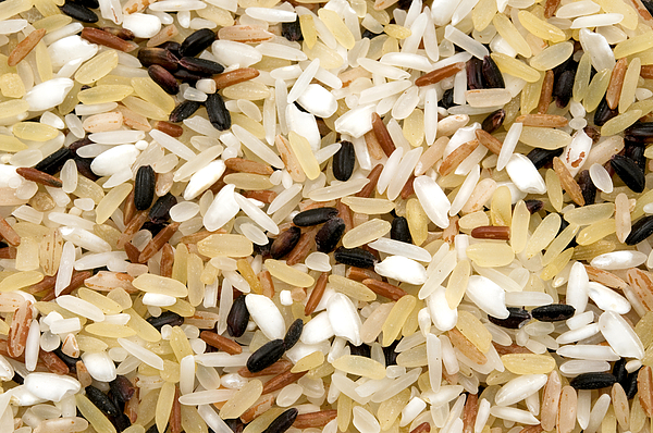 White Background Photograph - Mixed Rice by Fabrizio Troiani