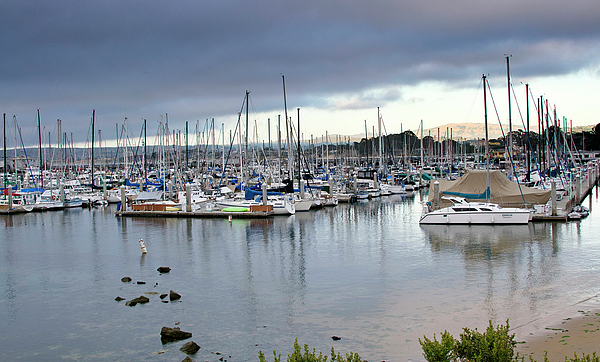 Monterey Harbor - California Photograph