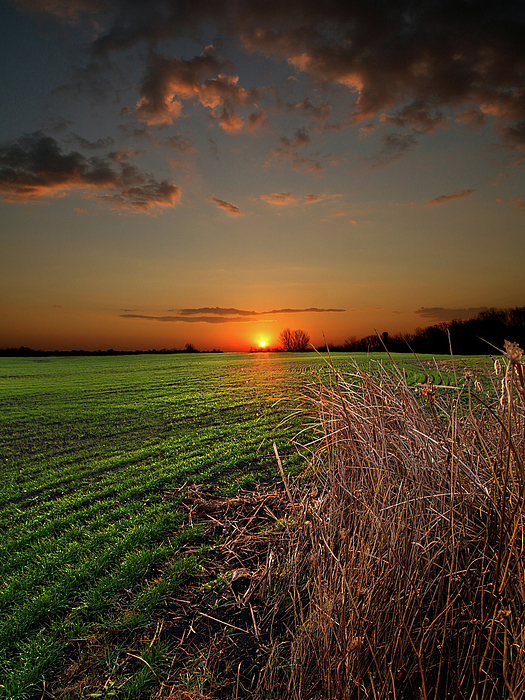 Horizons Photograph - Morning Glow by Phil Koch