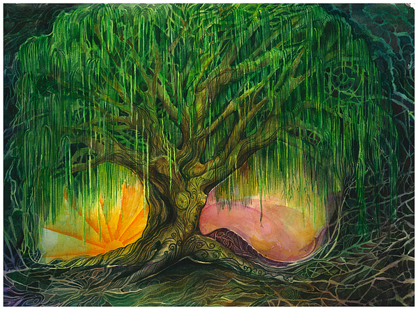 Willow Tree Painting - Mystical Willow by Colleen Koziara