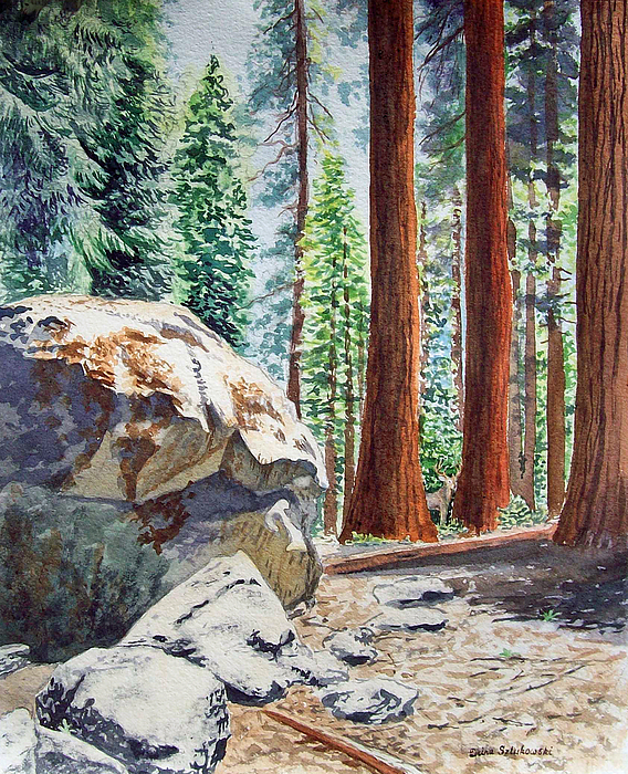 National Park Sequoia Painting
