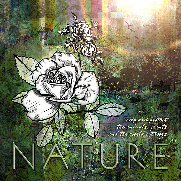Nature Digital Art - Nature by Evie Cook