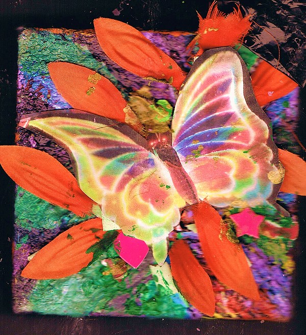 Neon Lights Butterfly On Boxed Canvas Mixed Media by Anne-Elizabeth Whiteway