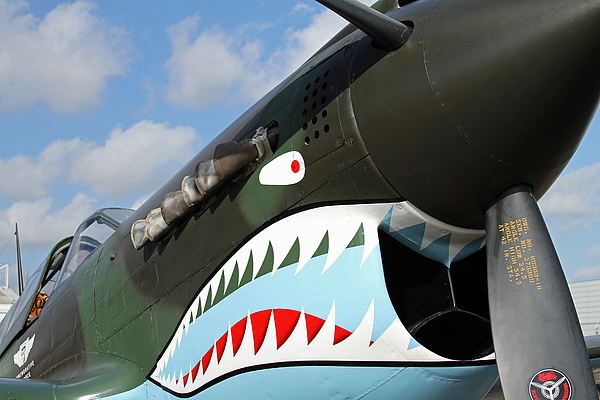 P-40 Photograph - P-40 Flying Tigers by Mark Grayden
