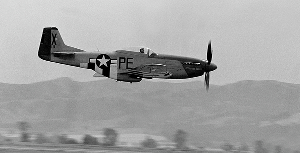 P51 Photograph - P-51d by BuffaloWorks Photography