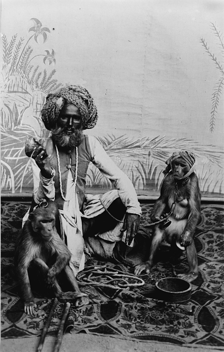 1920s Photograph - Portrait Of An Indian Fakir by Everett