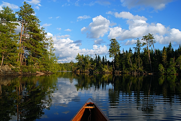 Quiet Paddle Photograph
