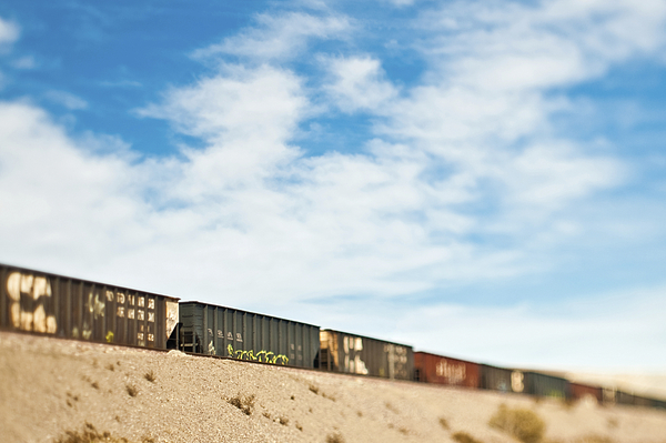Arid Photograph - Railroad Cars by Eddy Joaquim