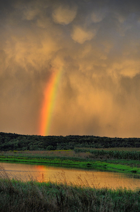 Rainbow Photograph - Rainbow Reflection by Emily Stauring