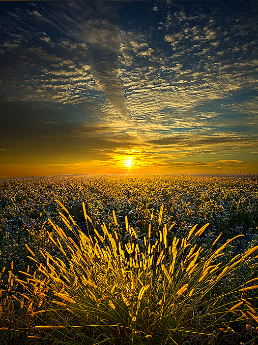 Horizons Photograph - Rural Choir by Phil Koch