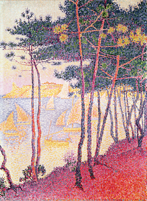 Neo Impressionist; Pointillist; Landscape; Coastal Scene Painting - Sailing Boats And Pine Trees by Paul Signac