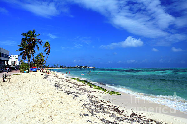 Pictures Photograph - San Andres Island Beach View by John Rizzuto