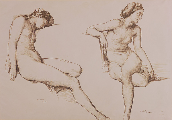 Sepia Drawing Of Nude Woman Drawing